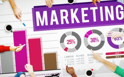 Cool Marketing Analysis Tools for Data Junkies